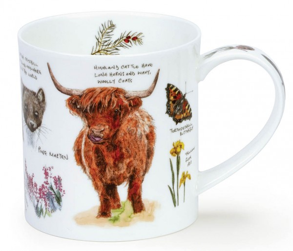 Dunoon Orkney Scottish Noteboook - Highland Cow