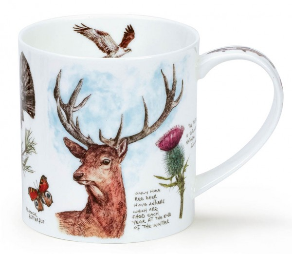Dunoon Orkney Scottish Noteboook - Stag