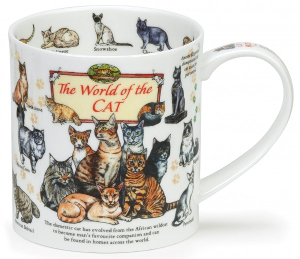 Dunoon Orkney The World of the Cat by Caroline Dadd