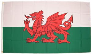 Wales The Red Dragon 90 x 60 cm