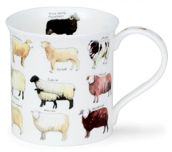 Dunoon Bute Animal Breeds - Sheep by Kate Mawdsley
